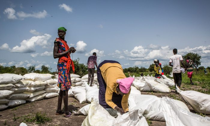 South Sudanese women collect sacks of maize and sorghum dropped from air by a World Food Programme plain in Jeich village in northern South Sudan. (Patrick Meinhardt/AFP/Getty Images)