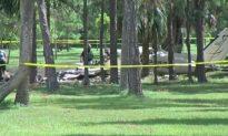 Small Plane Crash Kills 2 in Florida