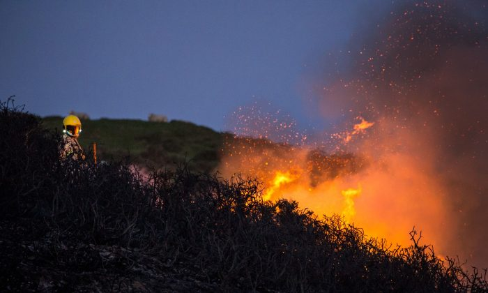 The Irving Fire chars 100 acres in Marin Country, Northern California. (Neil Thomas/Unsplash)