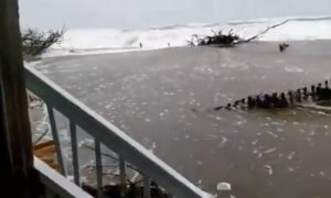 Watch: Hurricane Florence Storm Surge Flows Like River Between Houses in Avon