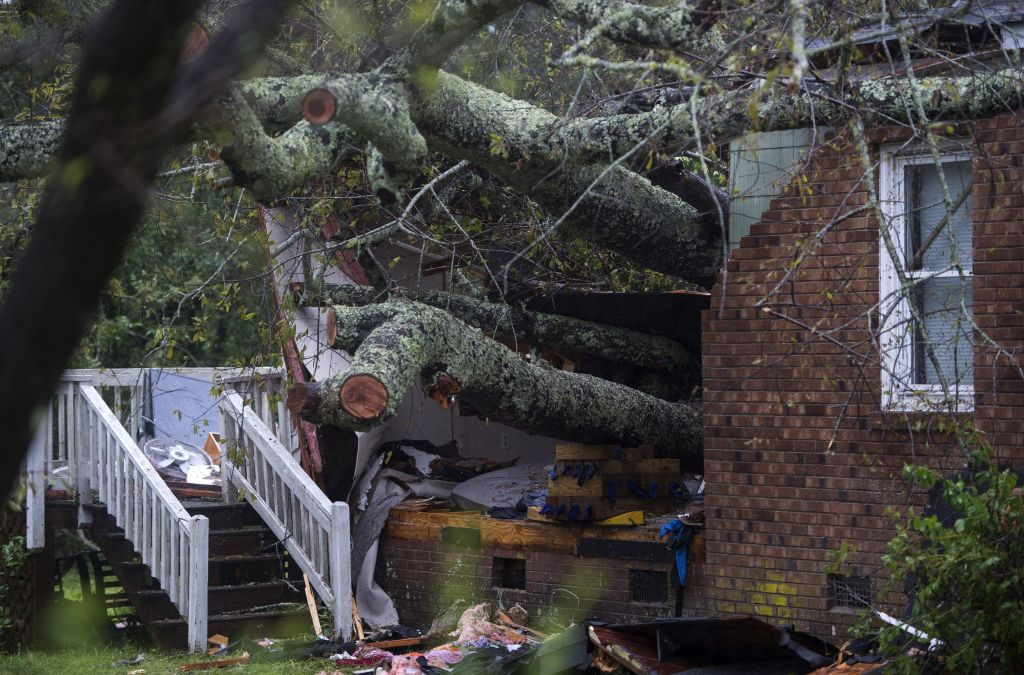 Tree falls on Wilmington house during Florence