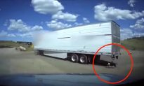 Sheriff Aide's Quick Thinking Saves Dog Tied to Moving Semi
