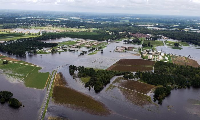 Aerial view of farms flooded after the passing of Hurricane Florence in eastern North Carolina, U.S., September 17, 2018.  (Reuters/Rodrigo Gutierrez)