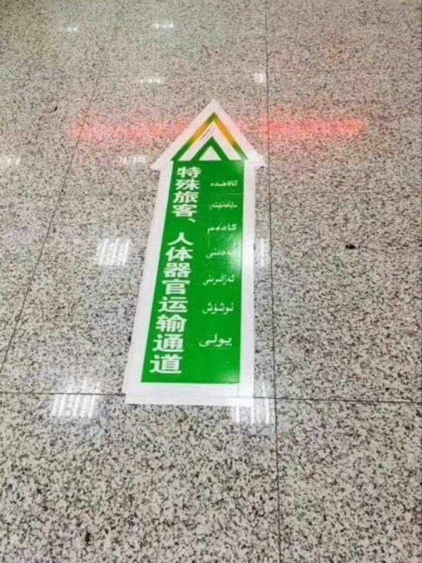 Express lane at Xinjiang airport for transport of human organs