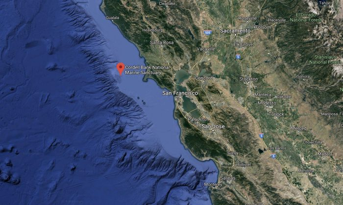Scientists with NOAA studied on national marine sanctuaries in the Cordell Bank and Monterey Bay. (Map data @2018 Google)