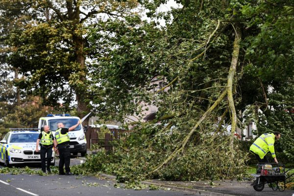 Police clear a tree as Storm Ali hits land