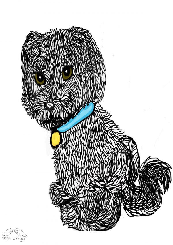 Drawing of dog