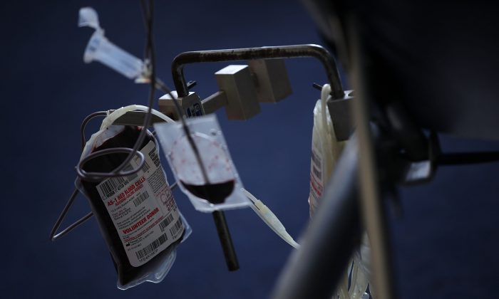 Blood is collected from a donor into a bag during a blood drive on Capitol Hill in Washington, DC on June 20, 2017. (Alex Wong/Getty Images)