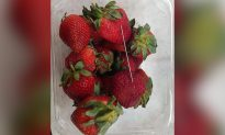 Strawberries Spook Australia Into Raising Jail Terms for Food Tampering