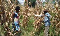 Former Star Marathoner Helps Resolve Deadly Tribal Conflicts in Kenya