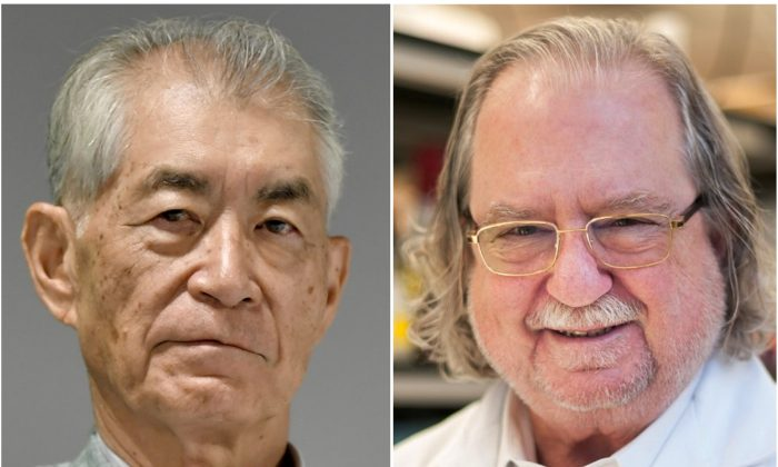 Ph.D. James P. Allison(R) and Kyoto University Professor Tasuku Honjo in Kyoto, Japan in this photo taken by Kyodo, on Sept. 17, 2018. (Mandatory credit Kyodo/MD Anderson Cancer Center at The University of Texas/Handouts via Reuters)