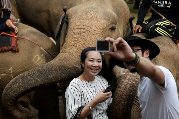 Couple take selfie with Elephant