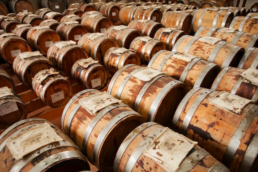 barrels of balsamic vinegar in Modena