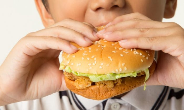 A new study links  ahigh-fat dietand antibiotics use with an 8.6 times higher risk for having pre-inflammatory bowel disease. (tiverylucky/shutterstock)