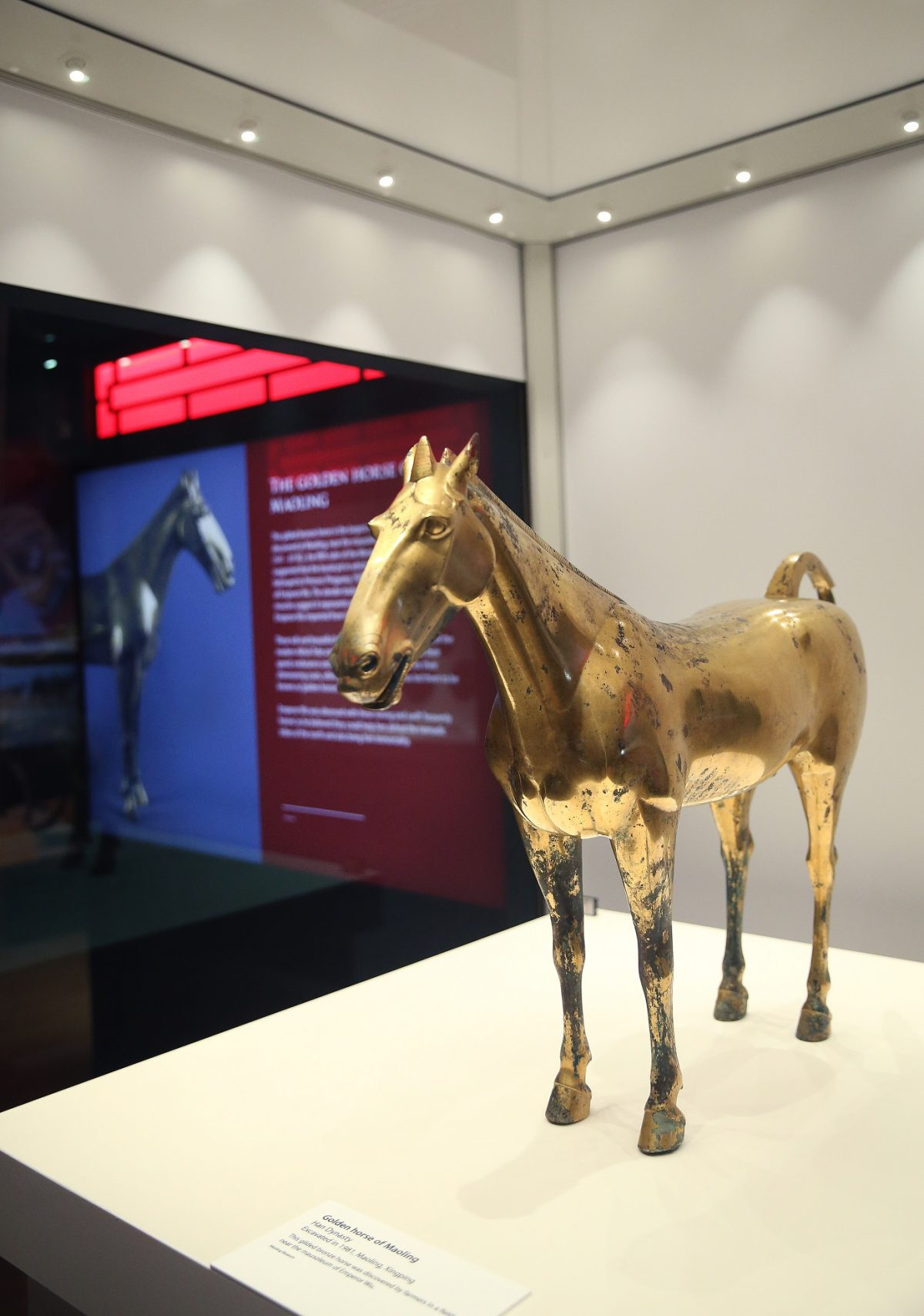"Han dynasty ""Golden Horse of Maoling"""