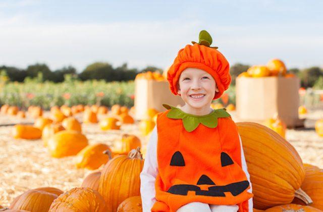 pumpkin (shutterstock)