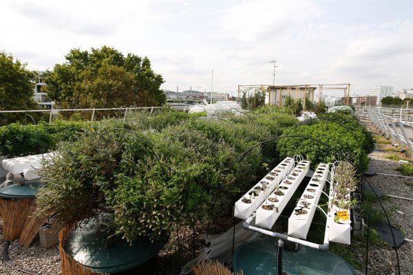 Urban Farming France
