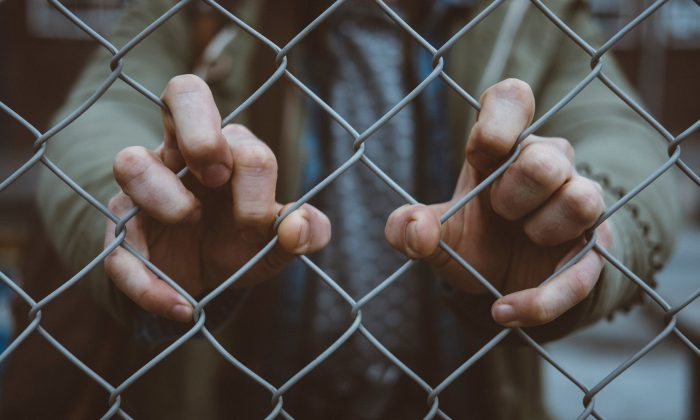 A boy holds onto a chain link fence. (Mitch Lensink/Unsplash)