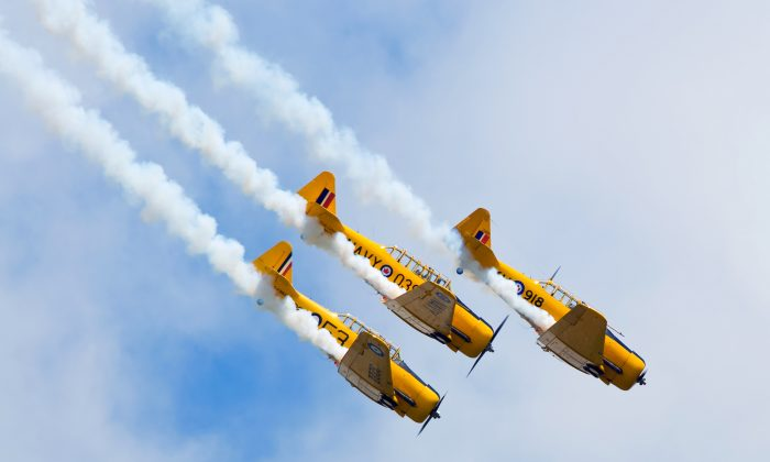 Three Harvard aircraft dive in formation at the Windsor International Airport. (Darren Brode/Shutterstock.com)
