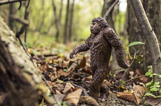 A stock photo of an action figure of Bigfoot. (Pixabay)