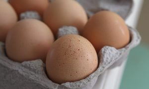 California Prop. 12 Could Raise Price of Eggs, Pork, Veal