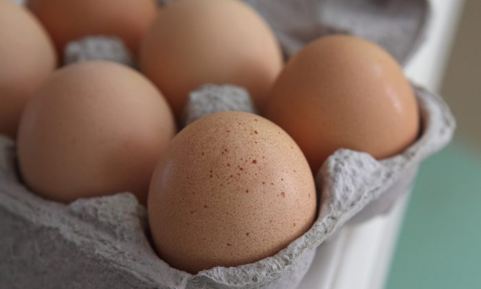 Fresh brown eggs sit in a carton in San Rafael, Calif. on August 26, 2010. (Photo Illustration by Justin Sullivan/Getty Images)