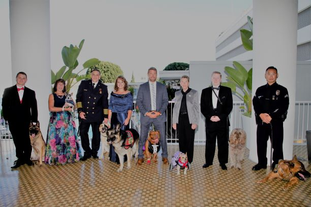 Dogs Winners attend the Sixth Annual American Humane Association Hero Dog Awards at The Beverly Hilton Hotel in Beverly Hills, California, on Sept. 10, 2016. (Tibrina Hobson/Getty Images)