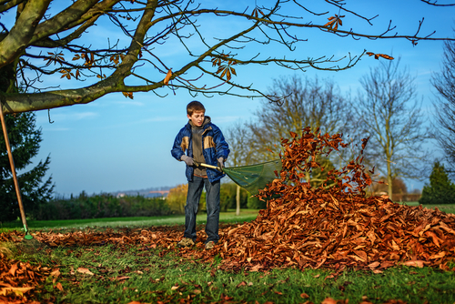 Kid or young adult doing any of these jobs: babysitting, walking the neighbor's dog, raking yards, mowing lawns, washing cars, or helping a senior with basic house cleaning. (Shutterstock)