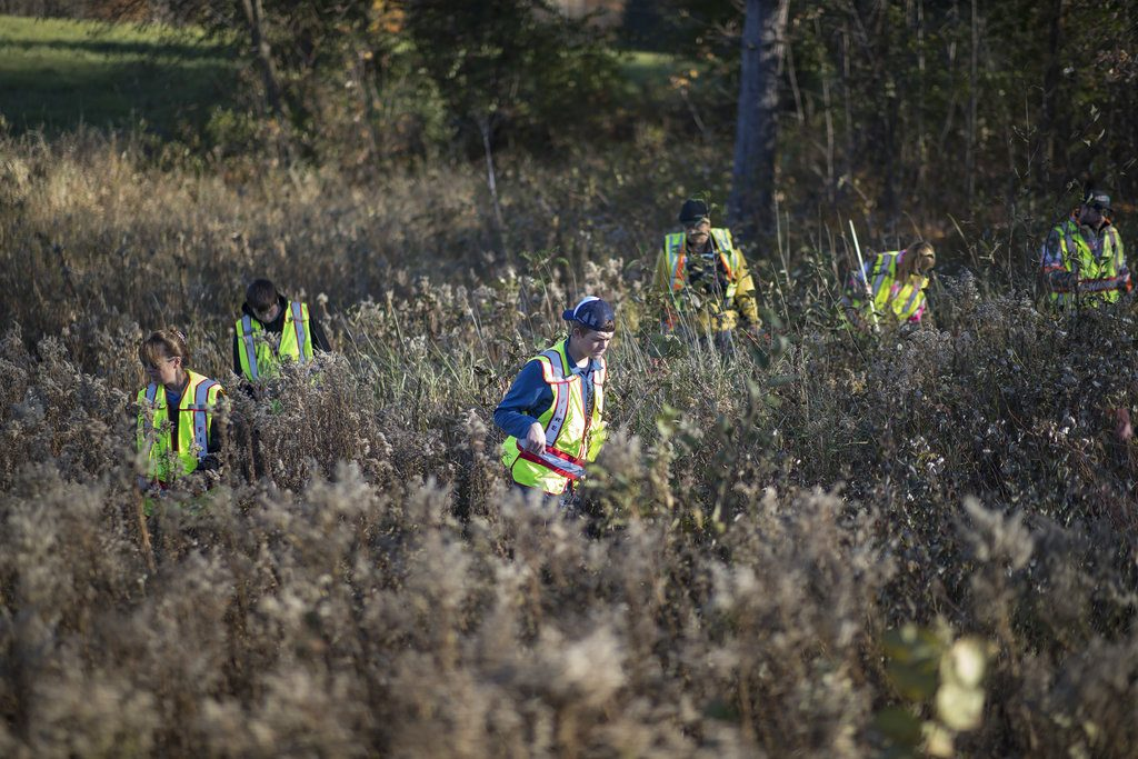volunteers search for closs