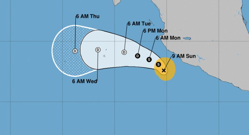 xavier forms in pacific