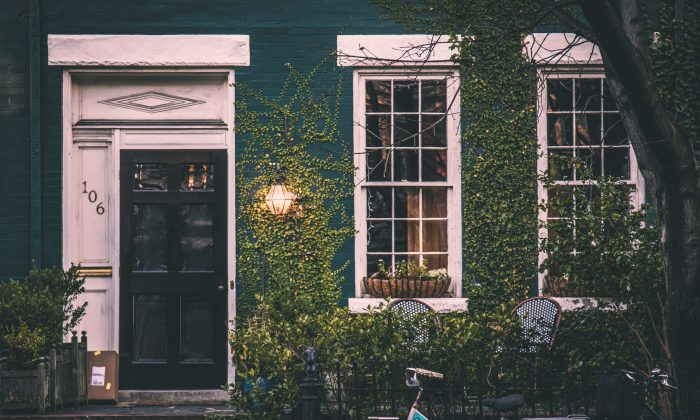 Lush greenery can transform our homes. (Christopher Harris/Unsplash)