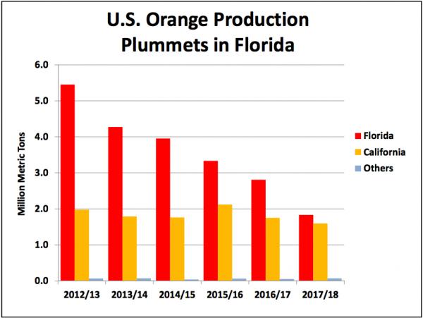 U.S. Orange Production Plummets in Florida