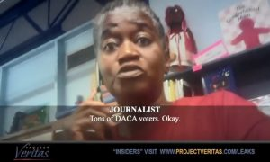 Election Officials Encourage Non-Citizen Voting, Influence Voters on Hidden Camera