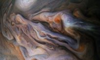 Mysterious Creature on Jupiter Spotted in New NASA Image