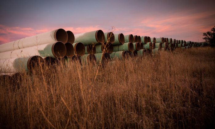 Miles of unused pipe, prepared for the proposed Keystone XL pipeline, sit in a lot outside Gascoyne, North Dakota on Oct. 14, 2014.  (Andrew Burton/Getty Images)