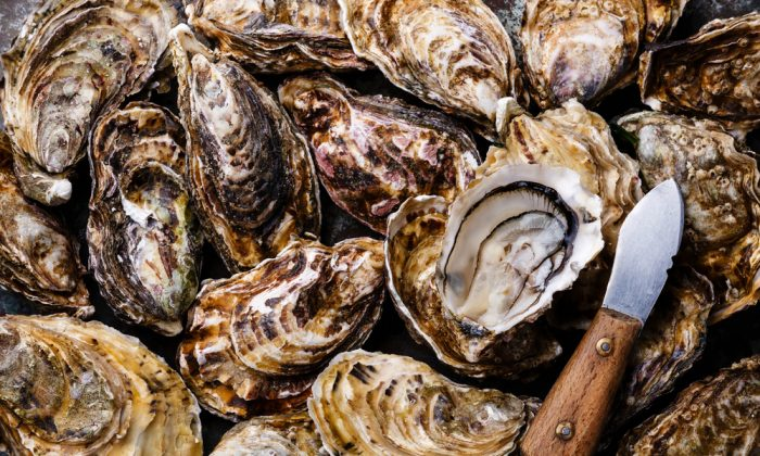 Oysters add flavor, meatiness, and a dose of New England tradition to Chris Stam's stuffing. (Shutterstock)