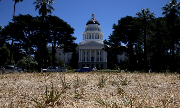 The lawn in front of the California State Capitol is seen dead in Sacramento, California on June 18, 2014 due to an ongoing drought. (Justin Sullivan/Getty Images)
