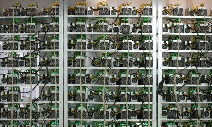 Cryptocurrency miners on racks at the HydroMiner cryptocurrency farming operation near Waidhofen an der Ybbs, Austria on April 25, 2018. (Reuters/Leonhard Foeger/File Photo)