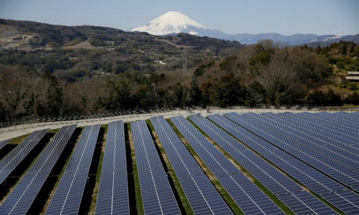 Solar panels are seen at a solar power facility as snow covered Mount Fuji is background in Nakai town, Kanagawa prefecture, Japan, March 1, 2016. (Issei Kato/File Photo/Reuters)