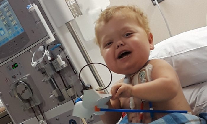 Jace Josephson, 2, in a file photo at the hospital. (Kidney for Jace/GoFundMe)