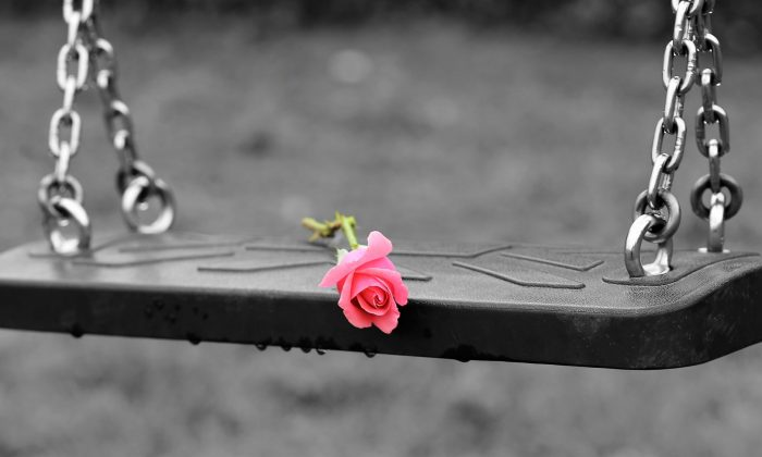 File photo showing a rose on a swing. (GoranH/Pixabay)