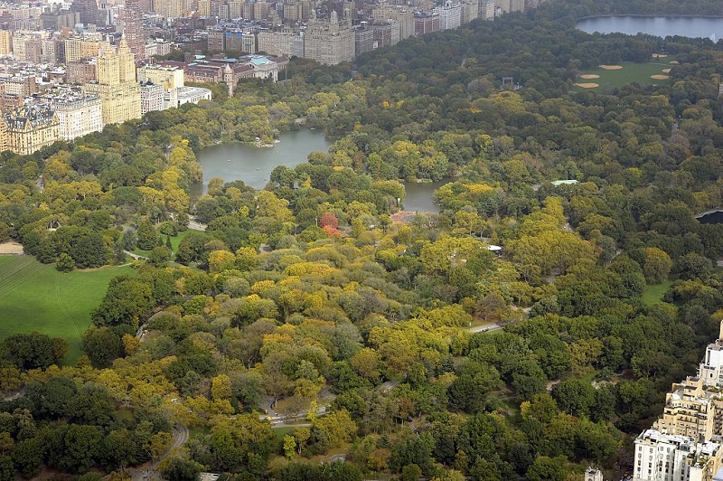 View of Central Park.