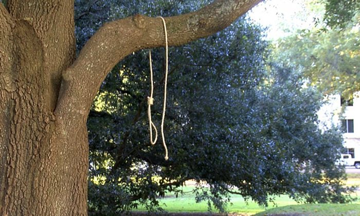 A noose hangs on a tree on the state Capitol grounds in Jackson, Miss., on Monday, Nov. 26, 2018. A Mississippi official said nooses and signs were found on the grounds of the Mississippi state Capitol. (WLBT-TV via AP)