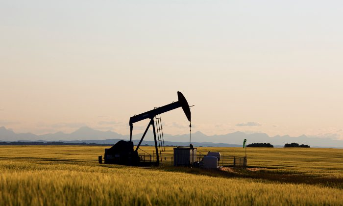 An oil pump jack pumps oil in a field near Calgary, Alberta, Canada, July 21, 2014. (Todd Korol/File Photo/Reuters)