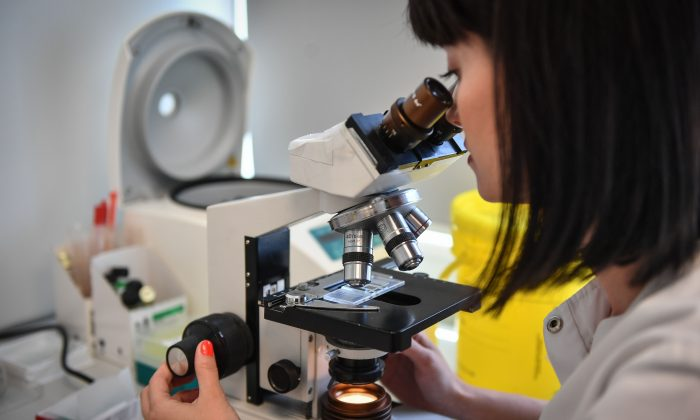 A medical employee uses a microscope at a microbiology laboratory in Bucharest, Romania, on April 12, 2018. (Daniel Mihailescu/AFP/Getty Images)