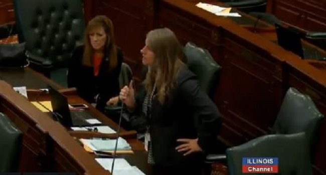 Illinois State Rep. Stephanie Kifowit, a Democrat, called for a Republican State Rep.'s family to die on Nov. 27, 2018. (Screenshot/Illinois Channel)