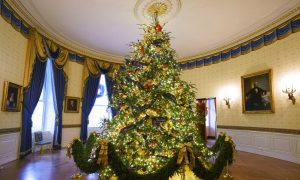 People Chosen to Help Decorate White House for Christmas Revel in Experience