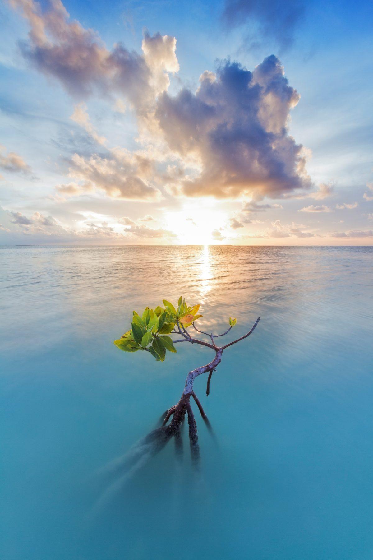 Sunset on Florida Bay in Everglades National Park.