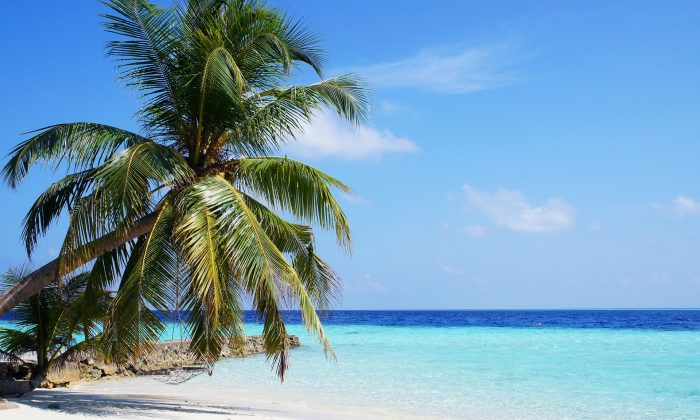 A beach in the Maldives, one of the locations on the itinerary for a $100,000 photography job embedded with a family on their travels. (Pixabay)