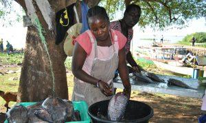 Chinese Fish Imports Hurting Kenyan Fish Traders